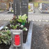 STRANG-Fritz_2010
